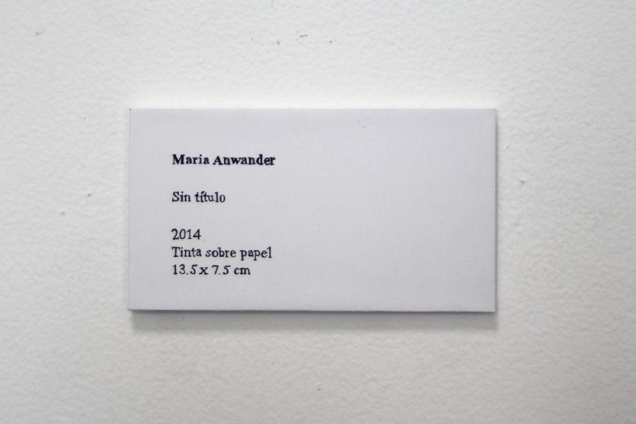 Maria Anwander, Steve Turner Contemprary