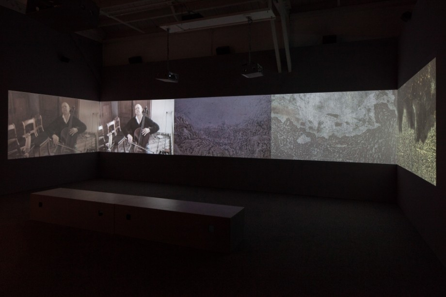 Werner Herzog - Steve Turner Gallery - Hearsay of the Soul