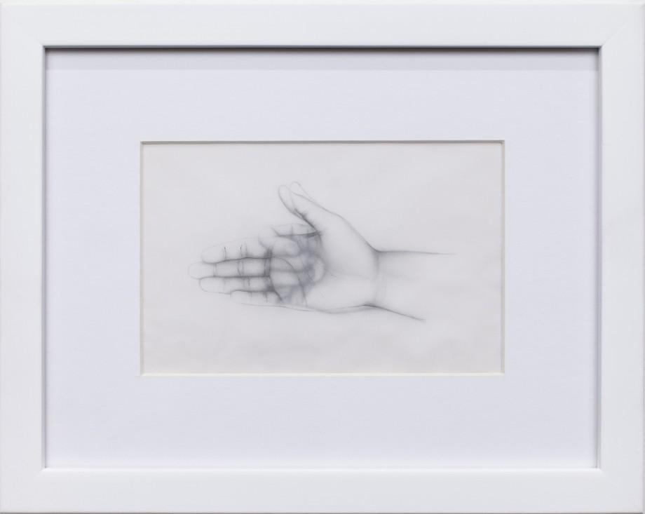 Fabiola Torres Alzaga gallery Steve Turner
