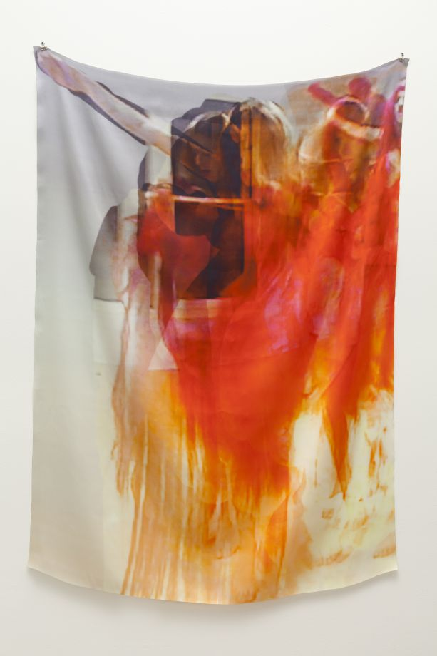 Petra Cortright, Steve Turner Contemporary