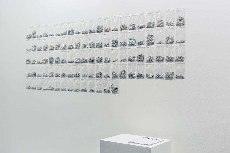 Maria Anwander, Steve Turner Contemporary, ViennaFair