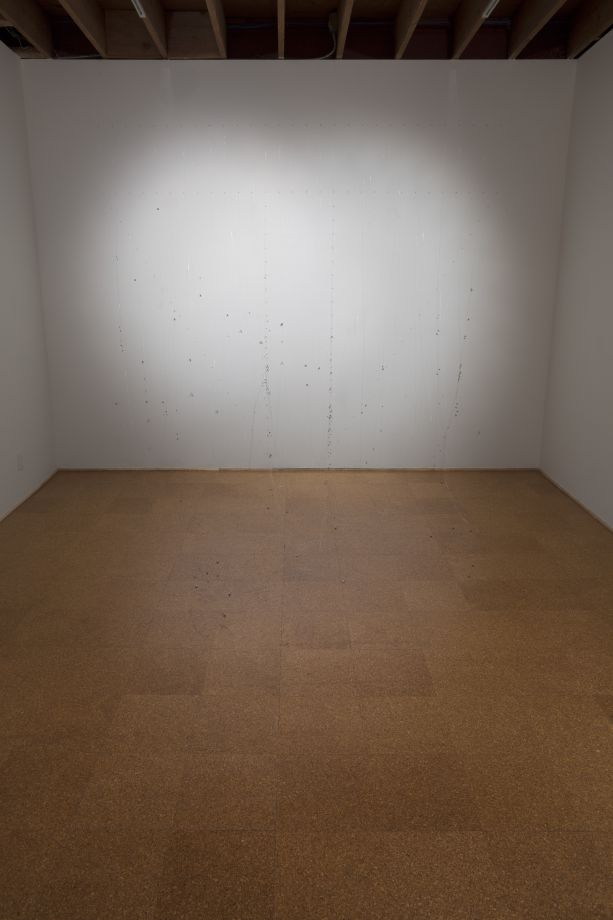 Plegaria Muda, 2014. Installation view, Steve Turner Contemporary, February 2014