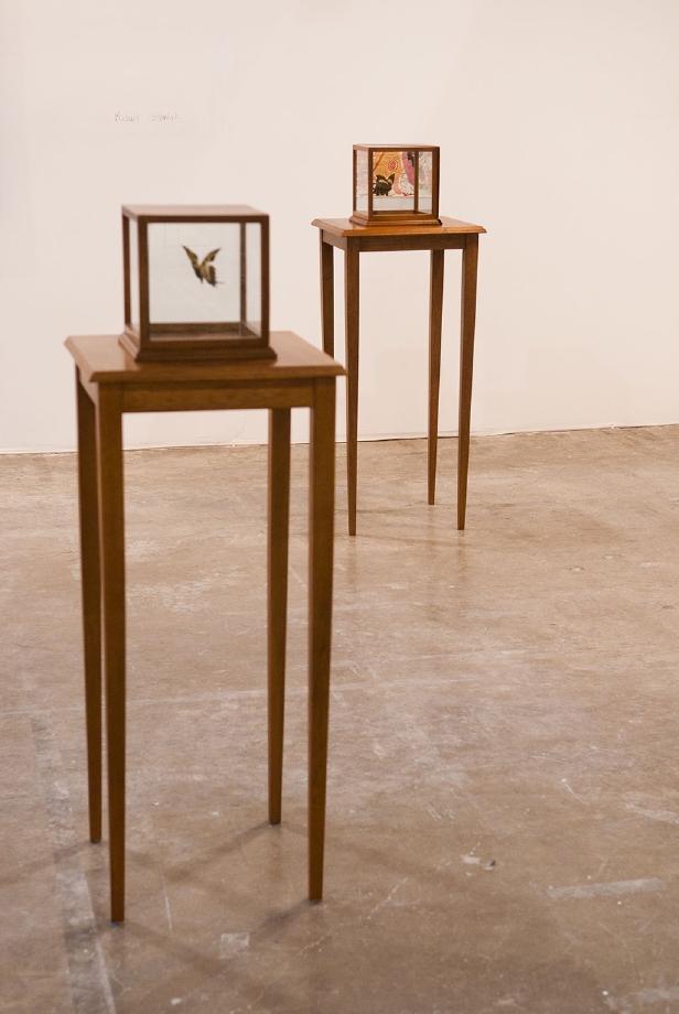 Fabiola Torres-Alzaga, Steve Turner Contemporary