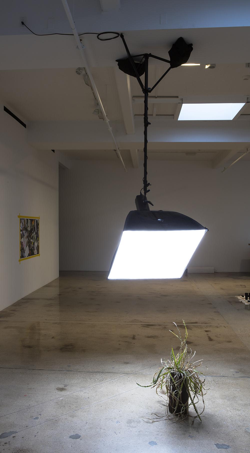 <em>Top Five Buddy Cop Films</em>. Installation view, Steve Turner, 2017