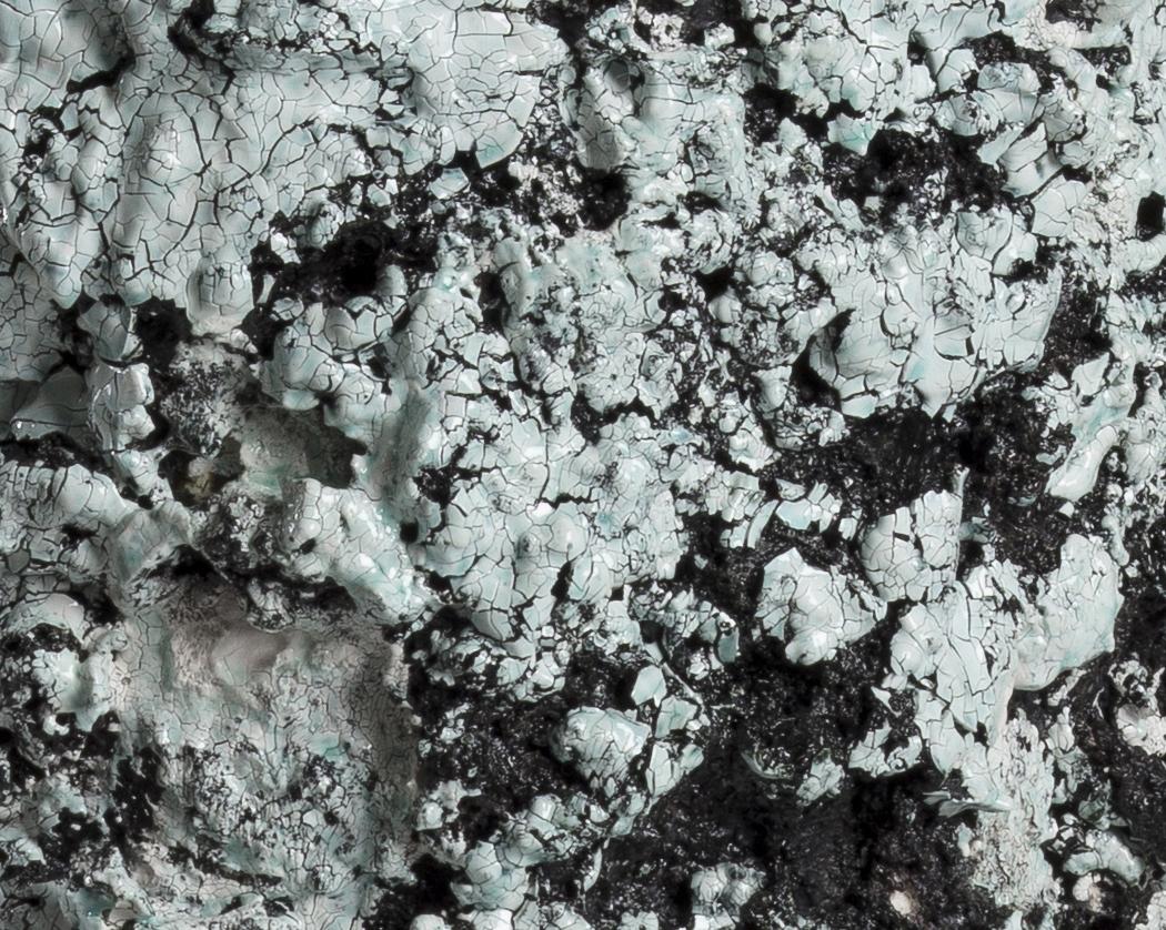 Tony Marsh. <em>Crucible Furiosa  5</em>, 2018. Ceramic, 15 x 13 x 13 inches (38.1 x 33 x 33 cm) Detail