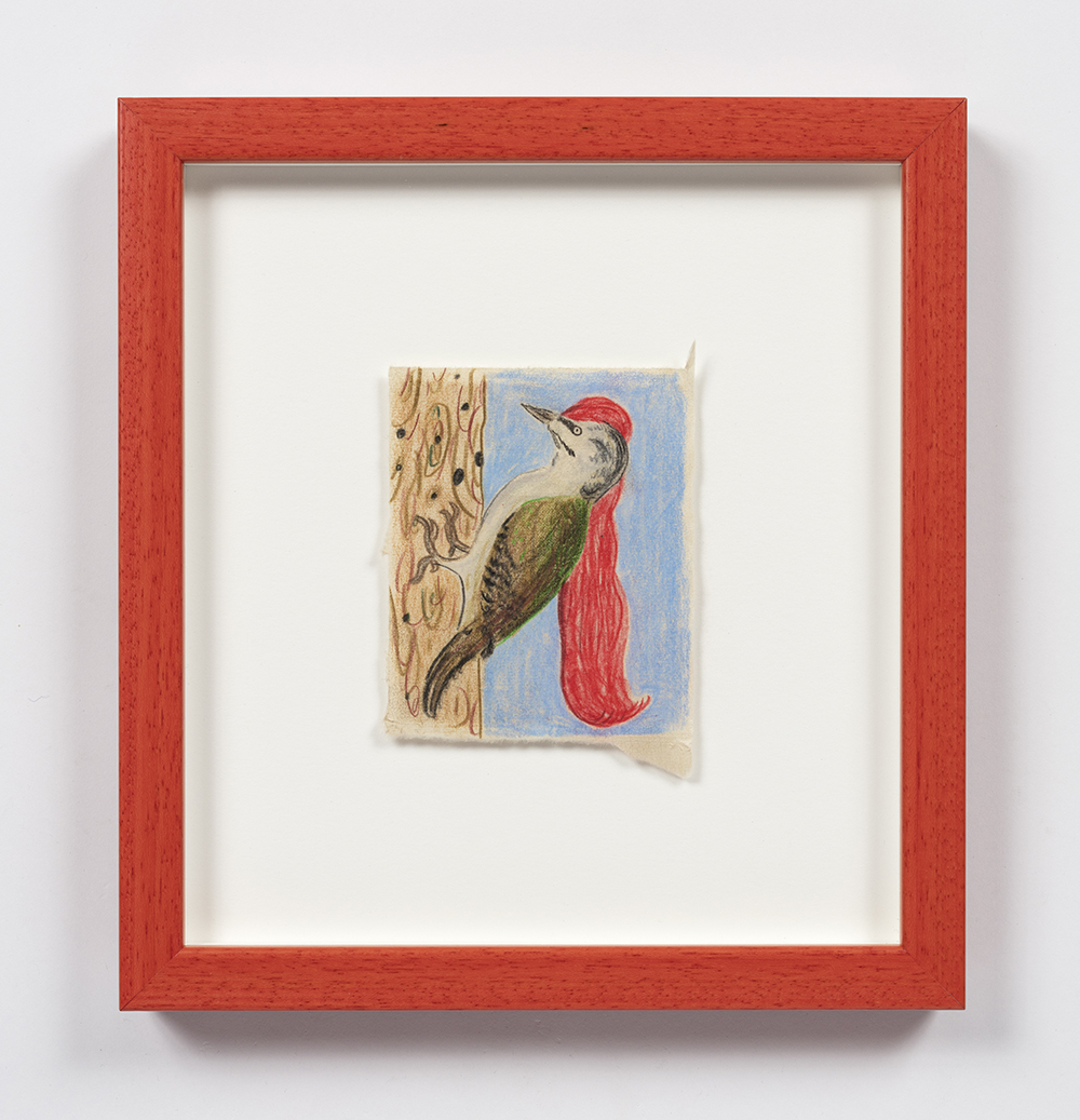 Kevin McNamee-Tweed. <em>Long Red Haired Woodpecker</em>, 2020. Pencil on mulberry paper, 4 1/4 x 3 1/2 inches (10.8 x 8.9 cm), 10 1/2 x 9 1/4 inches (26.7 x 23.5 cm) Framed